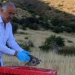 Hekimhan'da Kınalı Keklik Salımı Yapıldı